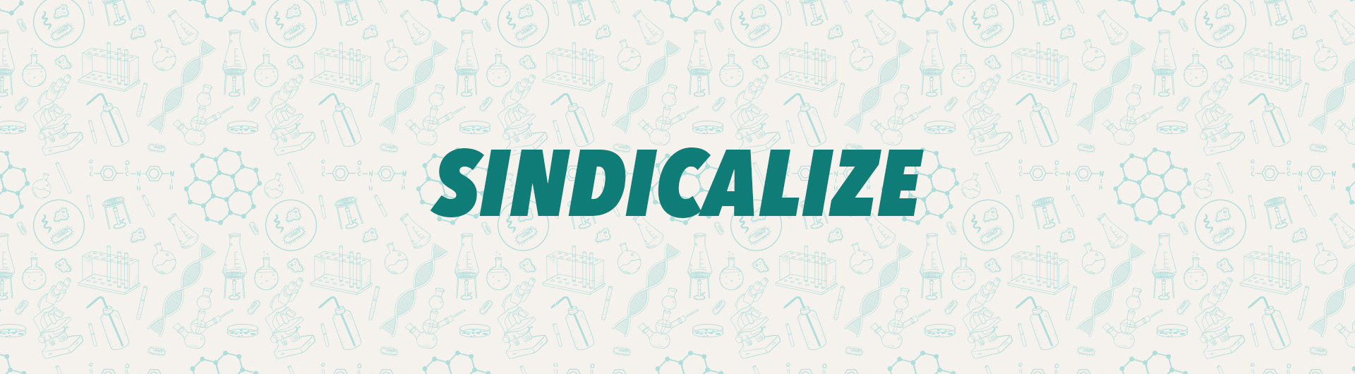 Sindicalize